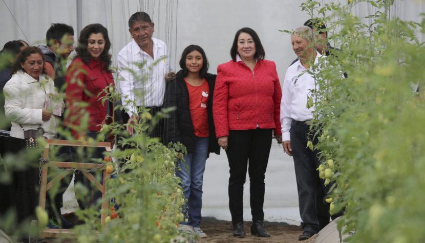 APOYA EL AYUNTAMIENTO DE METEPEC A PRODUCTORES DEL CAMPO