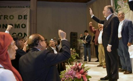 JOSÉ ANTONIO MEADE KURIBREÑA DESIGNA COORDINADORES REGIONALES PARA SU CAMPAÑA
