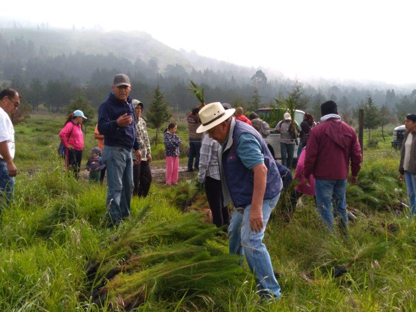 REFORESTAN FUNCIONARIOS MUNICIPALES ÁREAS PROTEGIDAS