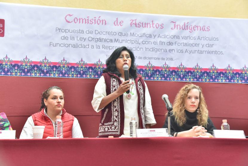 REALIZAN SEGUNDA CONSULTA A LOS PUEBLOS ORIGINARIOS PARA  MODIFICAR LA LEY ORGÁNICA MUNICIPAL