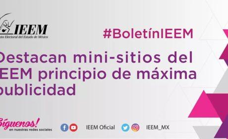 DESTACAN MINI-SITIOS DEL IEEM PRINCIPIO DE MÁXIMA PUBLICIDAD