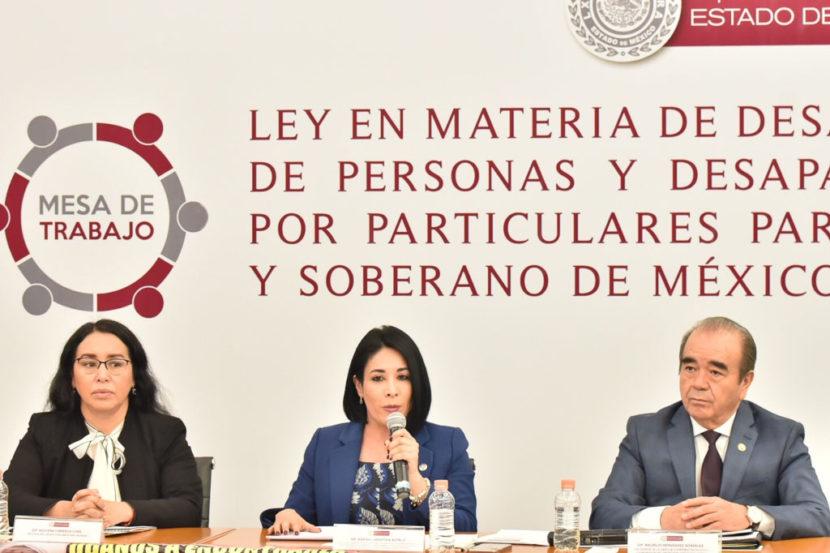 FUERON POCOS Y MAL EJERCIDOS LOS RECURSOS PARA LA BÚSQUEDA DE PERSONAS DESAPARECIDAS: KARINA LABASTIDA