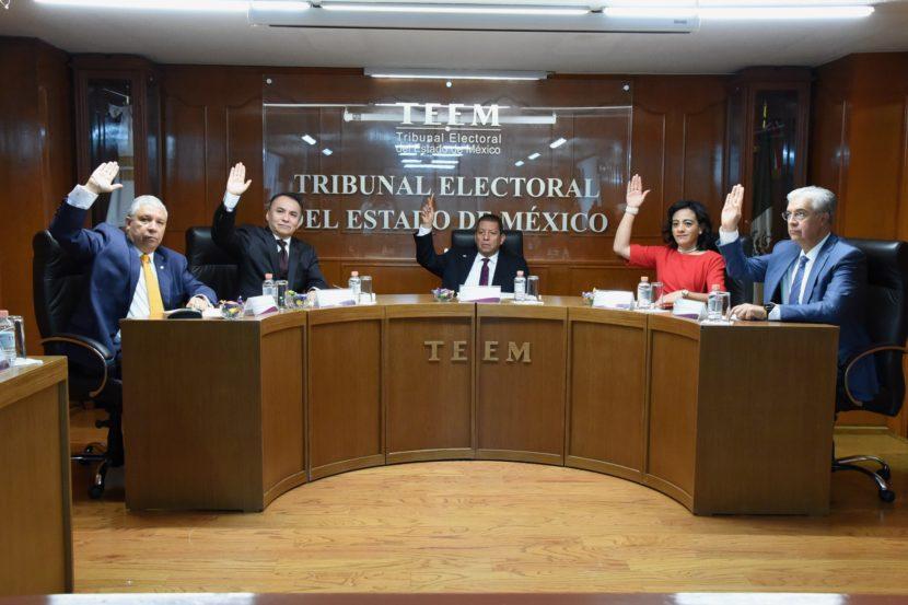 AMONESTA EL TEEM AL PARTIDO VERDE POR FALTA DE TRANSPARENCIA