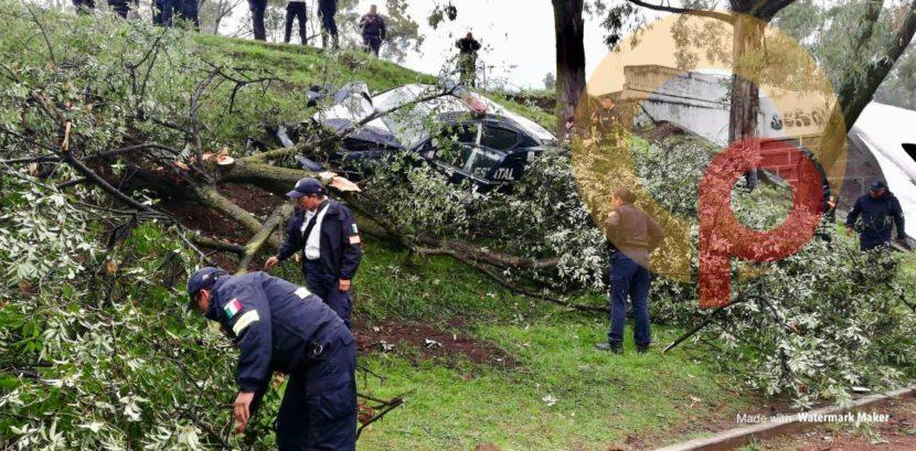 PATRULLA CHOCA CONTRA ÁRBOL EN METEPEC;HAY 4 POLICÍAS HERIDOS