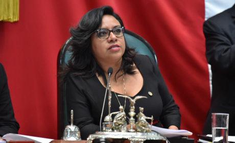 HA ESTABLECIDO LA 60 LEGISLATURA UNA NUEVA FORMA DE LEGISLAR: VIOLETA NOVA