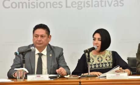 APRUEBAN COMISIONES EXHORTO A AUTORIDADES  PARA DETENER Y PREVENIR FEMINICIDIOS