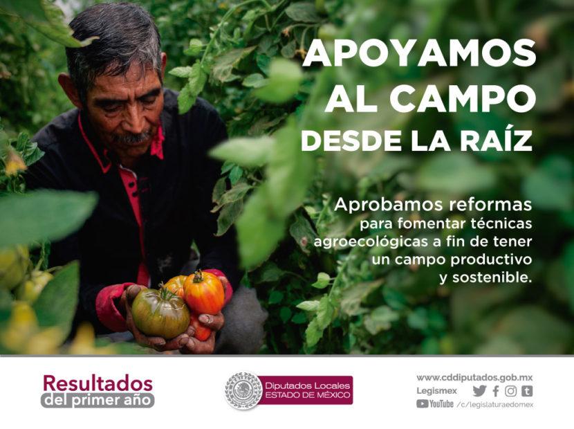 RECUPERAR LA PRODUCTIVIDAD DEL CAMPO, OBJETIVO DE REFORMAS