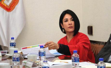 ATIENDEN ALCALDES ALERTA POR DESAPARICIÓN: KARINA LABASTIDA