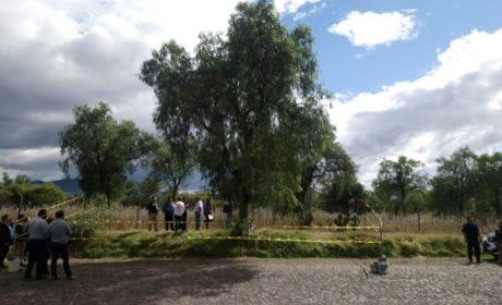 TALA CLANDESTINA EN ZONA ARQUEOLÓGICA