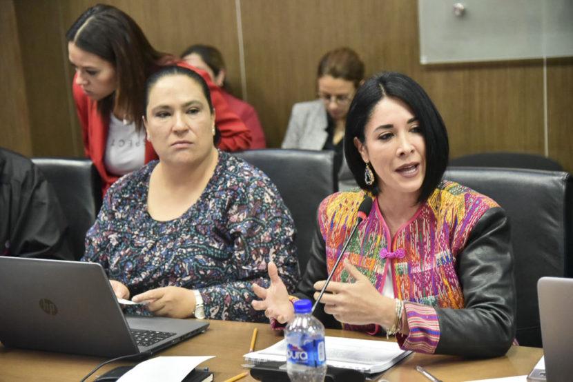 BUSCA KARINA LABASTIDA QUE LA LEY DE DESAPARICIONES  SE APRUEBE EN ACTUAL PERIODO DE SESIONES