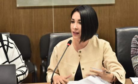 LA LEY DE DESAPARICIONES INCLUIRÁ EL SENTIR DE COLECTIVOS: KARINA LABASTIDA