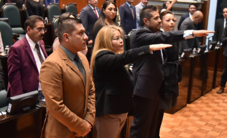 RINDEN PROTESTA DIANA MANCILLA Y GONZALO LEVI COMO  CONSEJEROS CIUDADANOS DE LA CODHEM