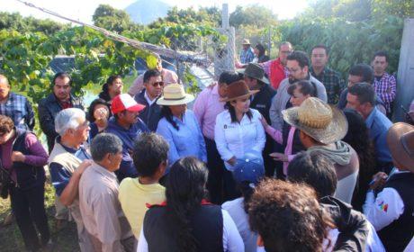 APOYA SEDAGRO A PRODUCTORES DE LA REGIÓN DE LOS VOLCANES
