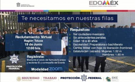BOLSA DE TRABAJO VIRTUAL DE RECLUTAMIENTO PARA EL SERVICIO DE PROTECCIÓN FEDERAL