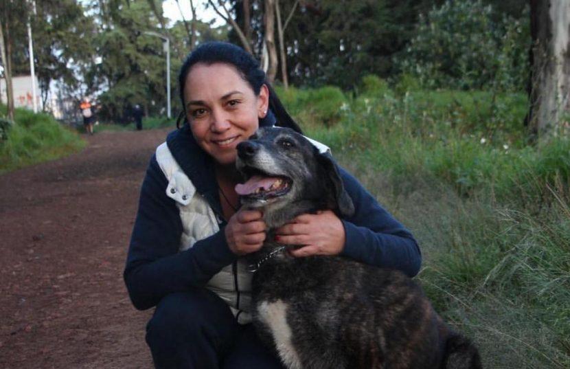 METEPEC COMPROMETIDO CON EL BIENESTAR ANIMAL: GABY GAMBOA