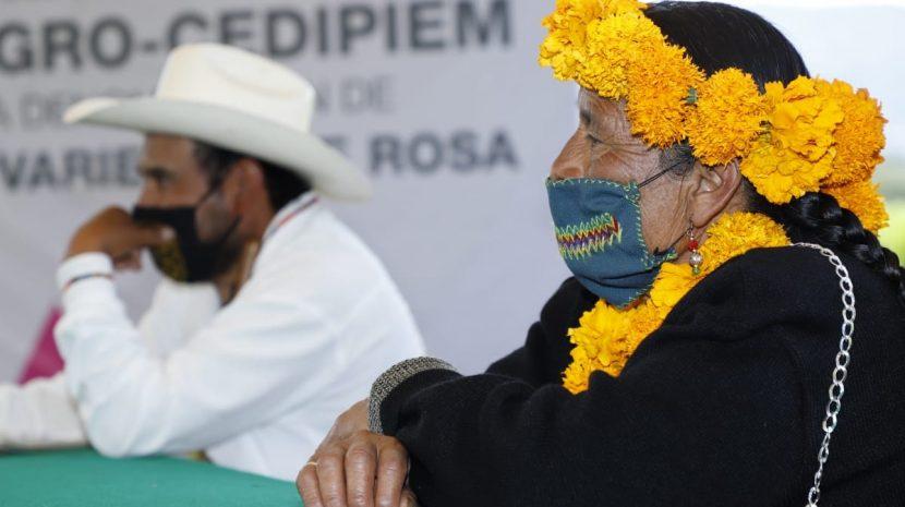 BUSCA EDOMÉX CERTIFICACIÓN DE » MYITAÑETY» NOMBRE DE ROSA MEXIQUENSE