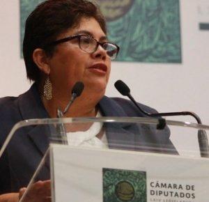 BUSCA MORENA PROTECCIÓN DE LAS BARRANCAS