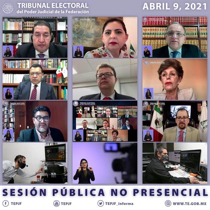 TRIBUNAL ELECTORAL DEVUELVE AL INE CASOS DE SALGADO Y MORÓN