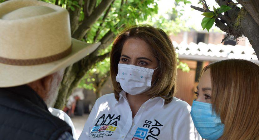 GOLPEADAS LAS FAMILIAS POR EL GOBIERNO FEDERAL: ANA LILIA HERRERA