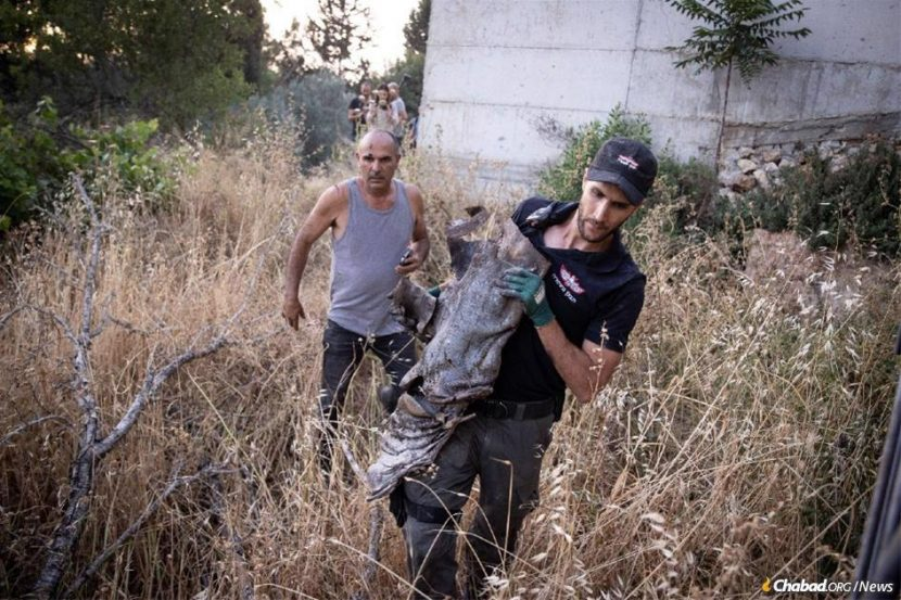 HAMÁS ASUME LA RESPONSABILIDAD DE LOS ATAQUES A JERUSALÉN
