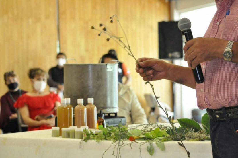 BUSCAN TRANSFORMAR PLANTAS EN PRODUCTOS MEDICINALES Y COSMÉTICOS